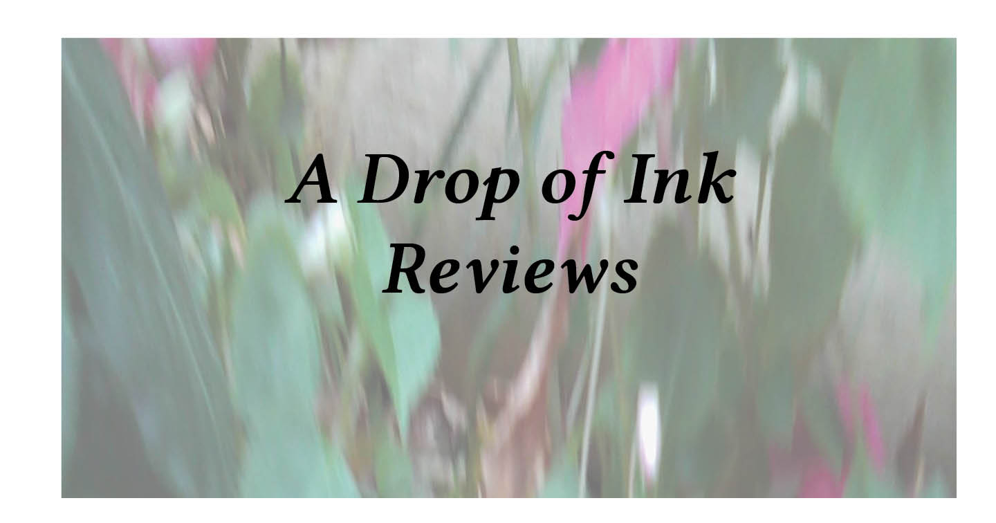 Adventures in Career Changing | Janet Gershen-Siegel | A Drop of Ink Reviews