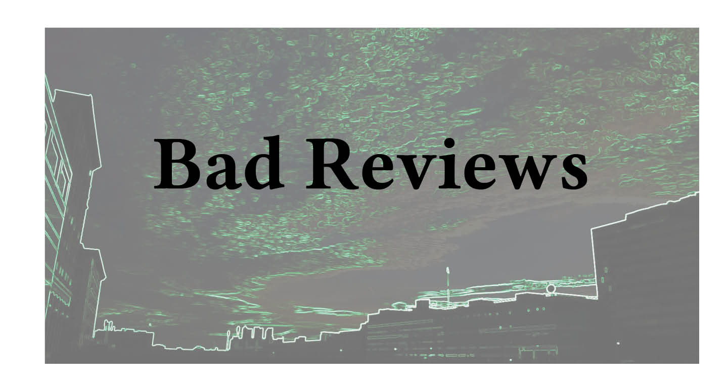 Adventures in Career Changing | Janet Gershen-Siegel | Bad Reviews