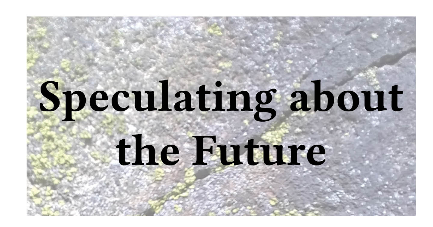 Adventures in Career Changing | Janet Gershen-Siegel | Speculating About the Future