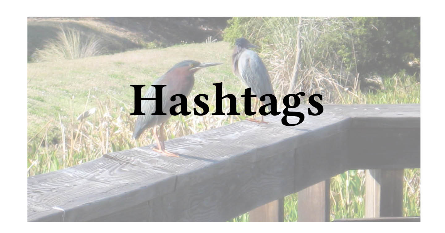 Adventures in Career Changing - Hashtags