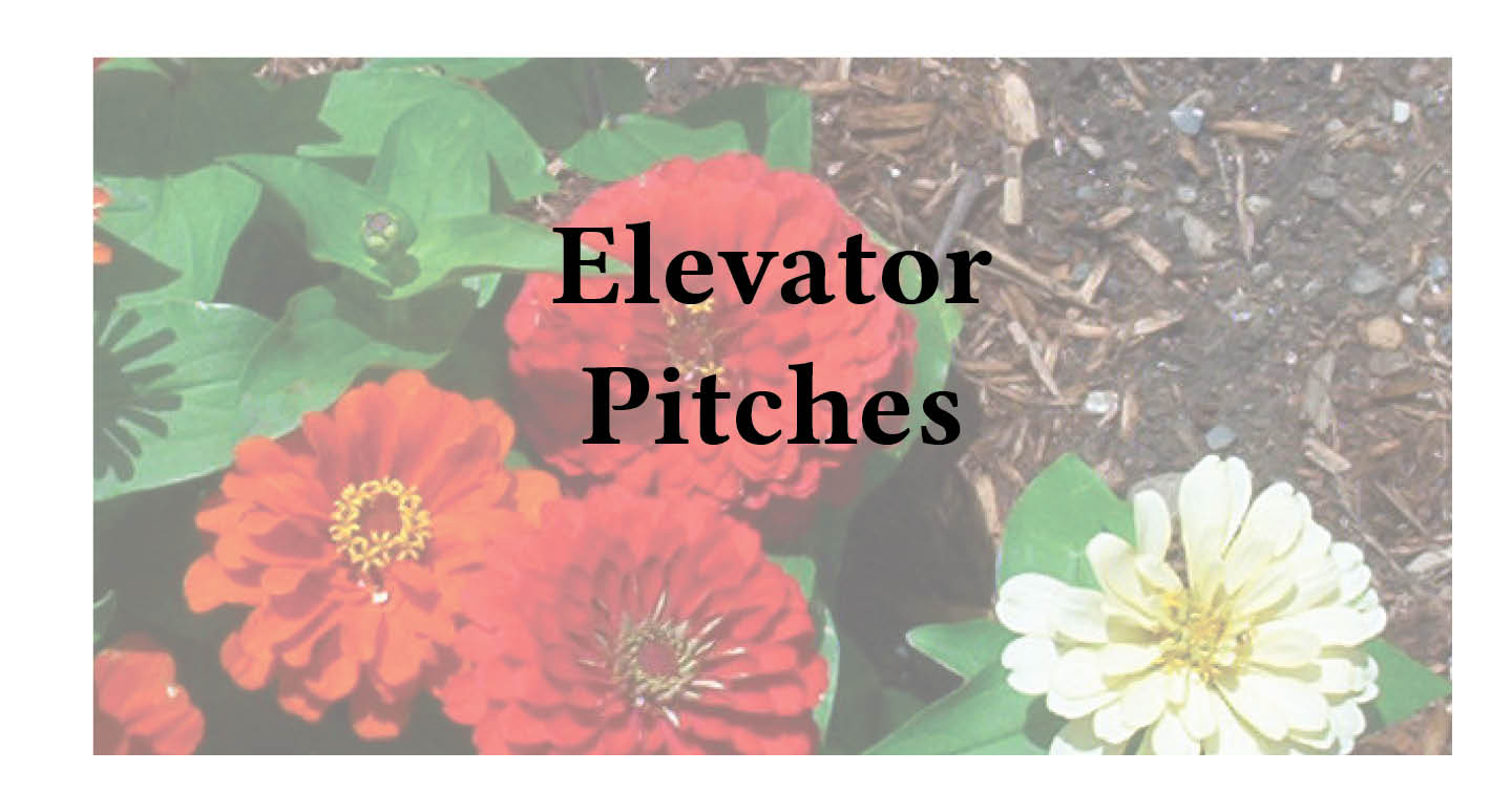 Elevator Pitches | Elevator Pitch | Janet Gershen-Siegel | Adventures in Career Changing