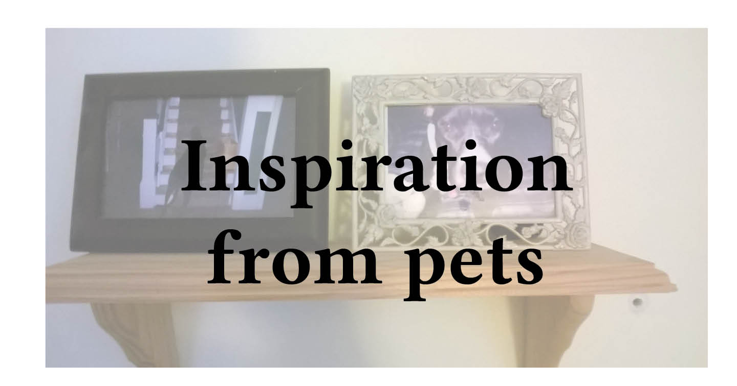 Adventures in Career Changing | Janet Gershen-Siegel | Getting inspiration from pets-canaries