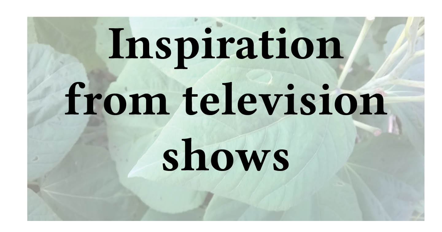 Adventures in Career Changing | Janet Gershen-Siegel | Getting inspiration from TV shows
