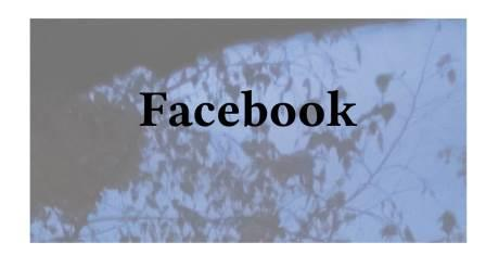 Facebook Profile Page Part - home page - offsite sharing