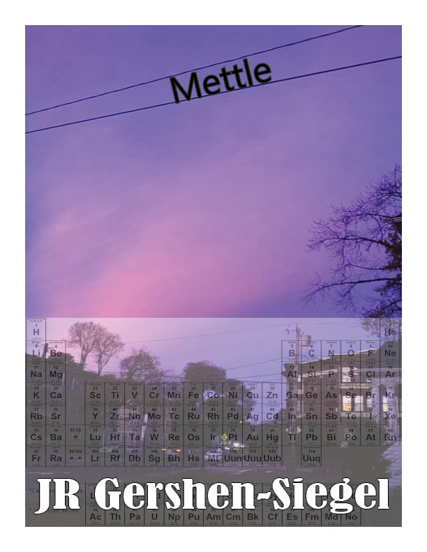 Mettle Draft Cover